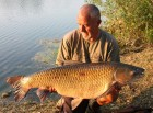 Bob Jenkinss 49lb 4oz  using BS1 from Bench