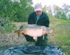 Tims 28lb  using maize from 1